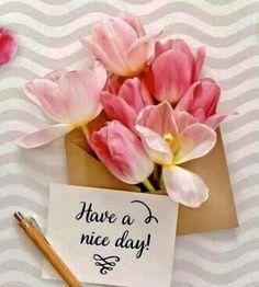 Good Morning Friends Images, Lovely Good Morning Images, Latest Good Morning Images, Good Morning Photos, Good Morning Love, Good Morning Flowers, Good Morning Greetings, Good Morning Wishes, Good Day
