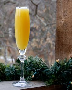 Champagne and orange juice - first drink of Christmas morning (sometimes very early!)