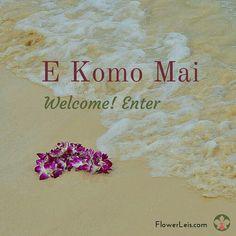 Hawaiian Flower Leis Shipped Nationwide Fresh From Hawaii Hawaiian Theme, Hawaiian Flowers, Hawaiian Man, Hawaiian Phrases, Hawaiian Sayings, Maui Vacation, Hawaii Travel, Hawaii Quotes, Aloha Quotes