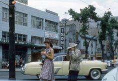 Ciudad de México: Escena cotidiana en Avenida de los Insurgentes, a la altura de Avenida Sonora (1954).