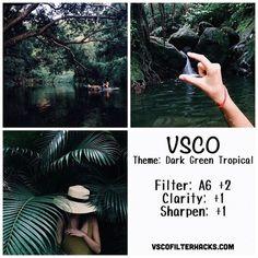 Dark Green Tropical Instagram Feed Using VSCO Filter A6