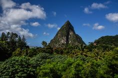 Cocoa is one of St Lucia's most important crops….yes that's right cocoa…in other words chocolate….see I told you this island was perfect! Chocolate is actually a big part of the country's culture and