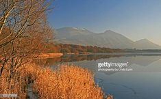View top-quality stock photos of Winter Light Bassenthwaite. Find premium, high-resolution stock photography at Getty Images. Bassenthwaite Lake, Winter Light, Royalty Free Images, England, Stock Photos, Mountains, Photography, Travel, Photograph