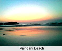 Vaingani beach is an important tourist destination in Maharashtra. This virgin beach consists of white sand and blue clean waters. To Explore the beach visit the page. #indianbeaches #travelindia #seabeach