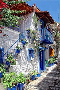 Blue and White House