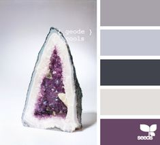 geode cools open concept-kitchen-dining-living purple in kitchen and into dining room gray as accent wall in living room all else eggshell/cream?