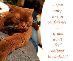 ... you only are in #confidence, if you don't feel obliged to #confide !