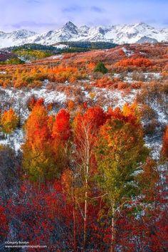 Autumn at The Dallas Divide - Colorado