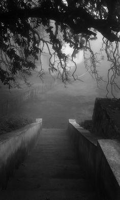 mysterious fog...