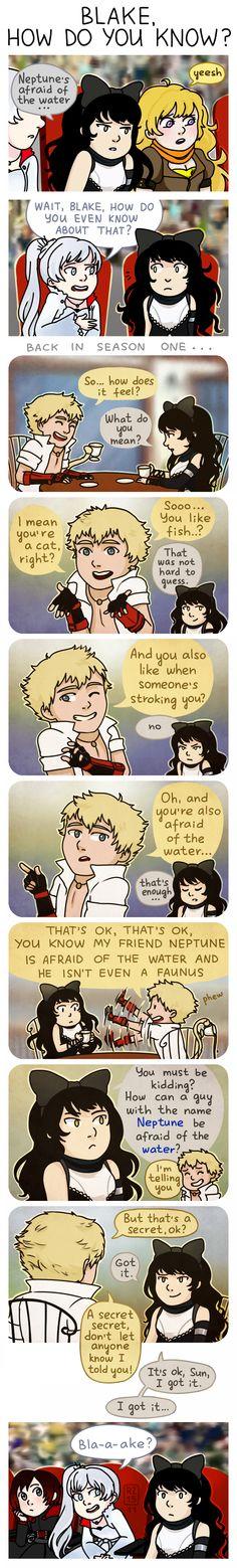 RWBY: Blake, how do you know? by rainbow-zebra23.deviantart.com on @DeviantArt