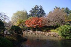 秋の馬事公苑内日本庭園 世田谷区上用賀(Kamiyoga in Setagaya-ku) | by setagayatoieba