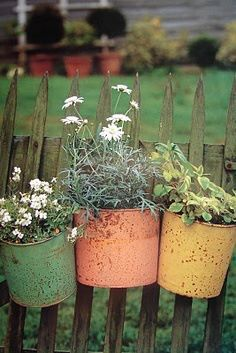 Old tin buckets planted up with pretties hanging on a fence