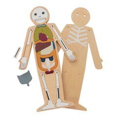 Puzzle humanoUn puzzle muy útil para aprender las partes del cuerpo haciendo encajar los huesos y órganos vitales según su orden correcto. Fabricado con madera FSC, apto para niños a partir de 3 años.Medidas: 25 x 14 x 1.5 cm