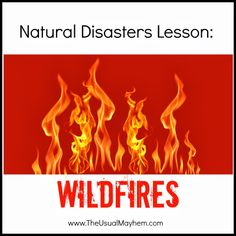 Middle school Natural Disasters unit part 3 is Wildfires. Fire management, hands-on experiments, learning about fire jumpers, and a video game where youre the fire warden are just a few of the things we did! Library Activities, Science Activities For Kids, Preschool Science, Science Experiments Kids, Science Lessons, Lessons For Kids, Teaching Science, Kindergarten Activities, Weather Activities