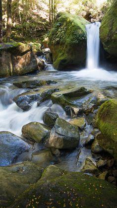 Waterfalls of Tasmania - Lower Chasm Falls