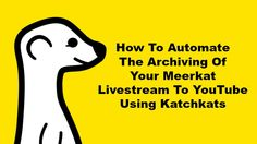 How to archive your Meerkat live stream to YouTube - video