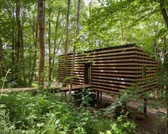 located in a forested area near bath, UK, architecture practice invisible studio have built a timber structure to serve as a workshop and office space. Building A Cabin, Timber Structure, News Studio, Interior Architecture, Bamboo Architecture, Vernacular Architecture, Unique Architecture, Interior Design, Beautiful Homes