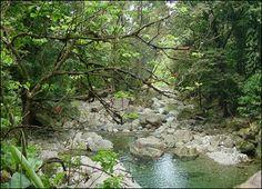agua-existencia-de-la-vida-2.jpg (416×300)