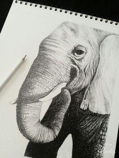 #drawing #art #elephant #black #white