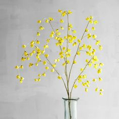 Pier 1 Imports Faux Wild Wax Flower Spray ($8.95) ❤ liked on Polyvore featuring home, home decor, floral decor, yellow, flower stem, yellow home decor, flower home decor, pier 1 imports and yellow home accessories