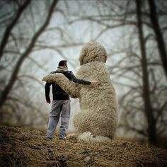 Together Forever Photoshops Pinterest - Guy uses photoshop to turn his miniature dog into a giant