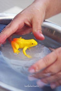 Experiment für Kinder ...mit Wasser und Eis...