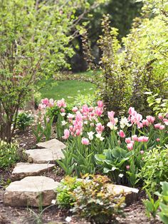 We love seeing cheery tulips pop up in the spring! More early-blooming flowers: http://www.bhg.com/gardening/flowers/perennials/early-blooming-flowers/?socsrc=bhgpin050213tulips=13