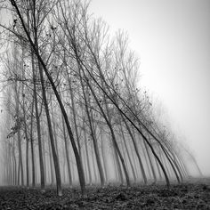 Water And Wind, The Force Of Nature - Photography by Pierre Pellegrini.