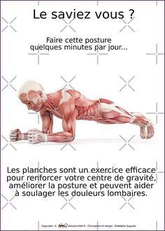 « Planches Musculo-squelettique des positions de Yoga - N°2 » par rodolphe Augusto | Redbubble