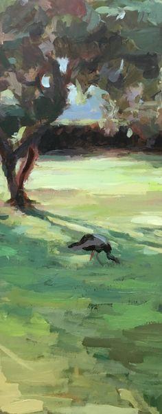 Pauw op een grasveld.