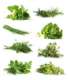 Increase the Health of Your Lunch: Add Healing Herbs to Raw Salads