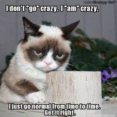 Crazy-Grumpy-Cat.jpg (400×400)