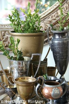 Vintage loving cup trophies filled with boxwood clippings #Christmas #silver #vintage