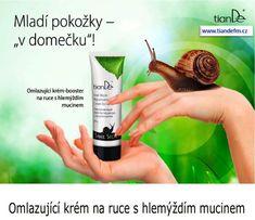 Tiandefm.cz   Kosmetika TianDe Shampoo, Personal Care, Beauty, Personal Hygiene
