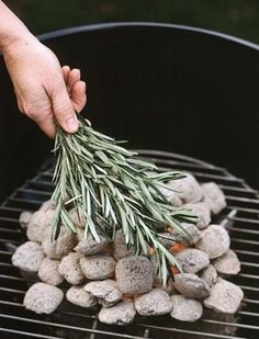 Forgo the meat marinade and put the rosemary right on the coals. Once the coals are uniformly gray and ashy, cover them with fresh rosemary branches. Your meat and vegetables will be flavored with the t Outdoor Entertaining, Outdoor Fun, Open Air, Camping Hacks, Camping Ideas, Truck Camping, Camping Stuff, Outdoor Projects, The Great Outdoors