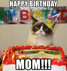 Grumpy Cat must be allergic to happinessand parties. - Grumpy Cat - Ideas of Grumpy Cat - Grumpy Cat must be allergic to happinessand parties. The post Grumpy Cat must be allergic to happinessand parties. appeared first on Cat Gig. Grumpy Cat Quotes, Meme Grumpy Cat, Funny Cat Memes, Funny Cats, Funny Animals, Funny Quotes, Cat Jokes, Funny Humor, Quotes Quotes