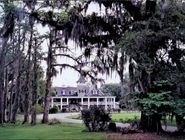 Magnolia Plantation & Gardens; tours are offered here