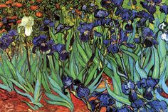 Irises, by Vincent van Gogh FYI, Another Artist: http://universalthroughput.imobileappsys.com/ The Gallery Of An Acrylic Creationist here: http://universalthroughput.imobileappsys.com/site2/gallery.php