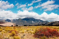 Autumn is coming to Colorado  Great Sand Dunes National Park CO [OC] [48593239] #reddit