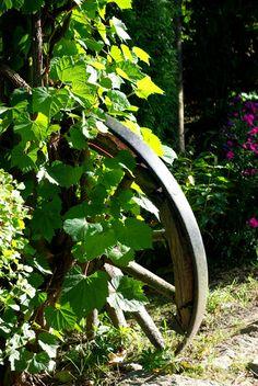 ogrodowe tu i tam: Ogrody Tematyczne Hortulus Dobrzyca rok 2016