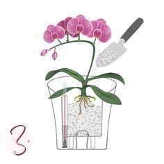 LECHUZA Self-Watering Planters: Less Frequent Watering. Garden, Plants, Decor, Fashion, Barn Owls, Moda, Garten, Decoration, Fashion Styles