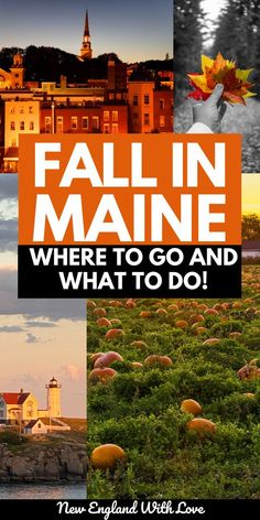 Maine sits at the northeastern tip of the United States, and because of this, it is one of the most spectacular locations in North America to enjoy the delights of the season! Do you want to spend a cool autumn day hand-picking crisp, delicious apples in a picturesque apple orchard? Then Maine is the place to go for you. New England Fall, New England Travel, Dc Travel, Travel Maine, Stonehenge History, Fall In Connecticut, Maine In The Fall, Best Places To Vacation, East Coast Road Trip