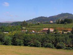 Quinta da Cumieira | Vakantie Noord-Portugal