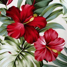 Tissu rouge Hibiscus Floral crème Hawaï par BluePacificFabrics