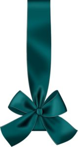 TEAL RIBBON WITH BOW