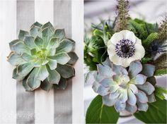 Nantucket Wedding. succulents.  wedding flowers.  Katie Kaizer  Photography