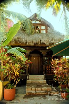 My guest casa. Tropical Homes, Tropical Backyard, Tropical Gardens, Tropical Style, Bamboo Roof, Bamboo House, Monuments, Mexican Colors, Hacienda Style