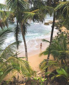 Picture perfect!  A warm window to #Manzanillo on the #Caribbean Coast via @travel_love_roma! #CostaRicaExperts #CostaRica