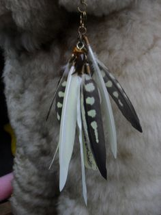 cockatiels feathers how to?