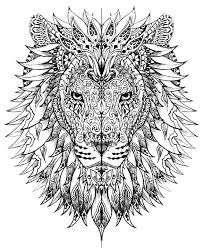 Image result for coloring for adults